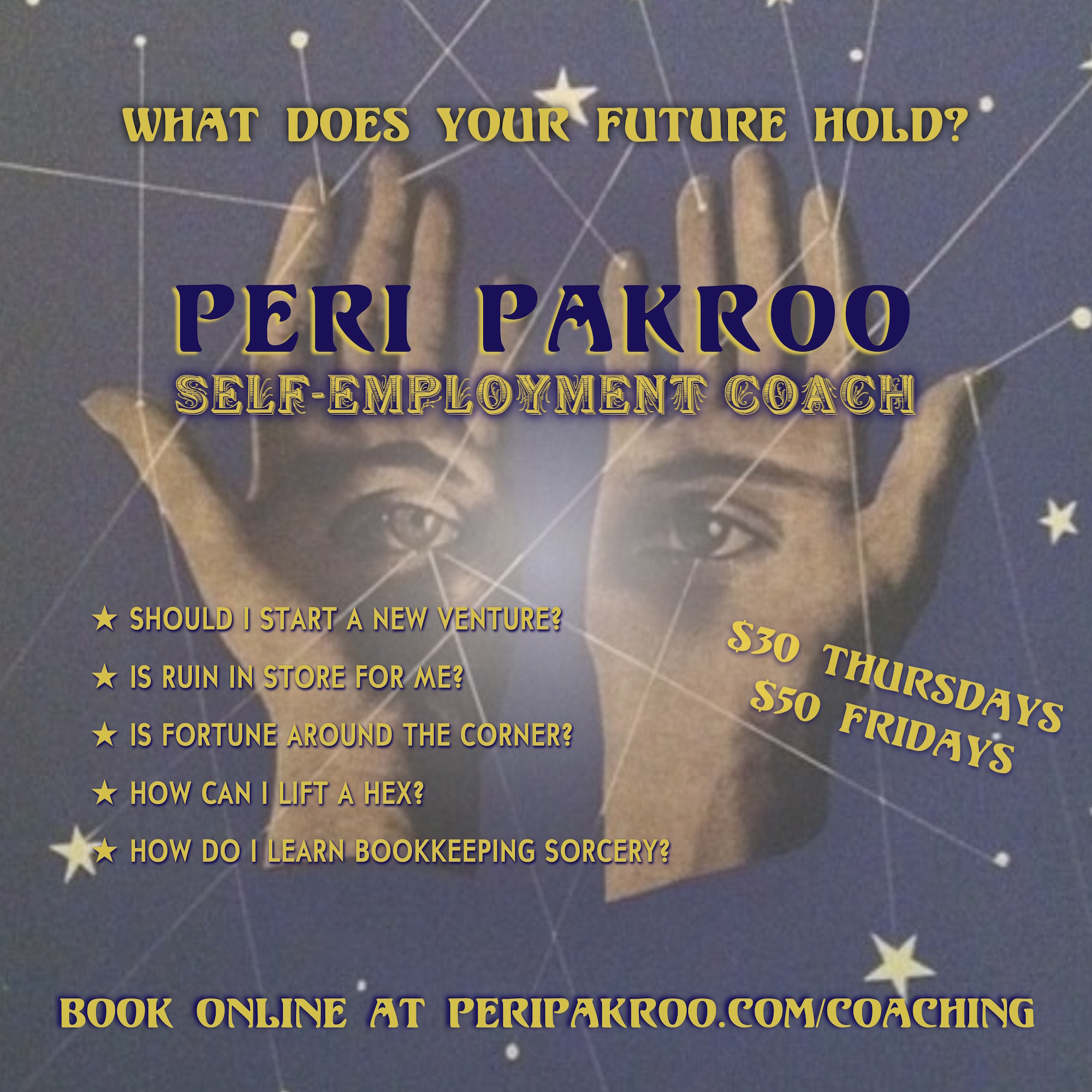 Peri Pakroo, Self-Employment Coach