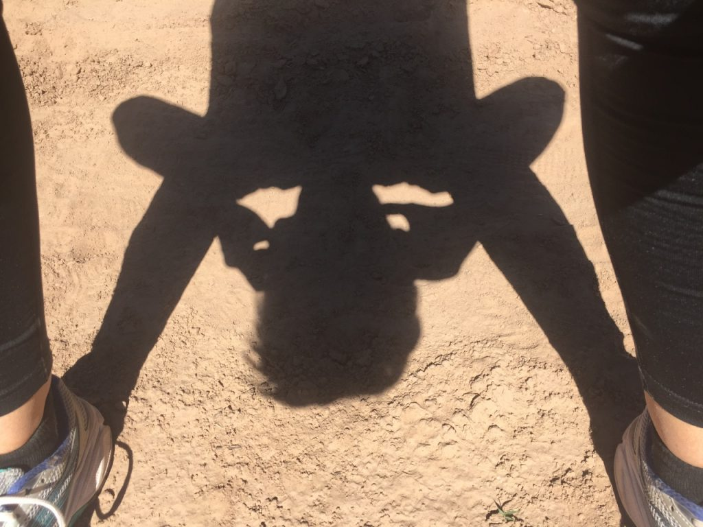 Upside-down shadow. Photo by Peri Pakroo.